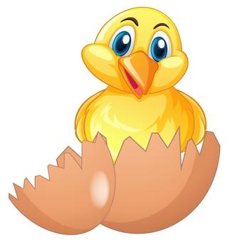 Pulcino carino nell'uovo rotto