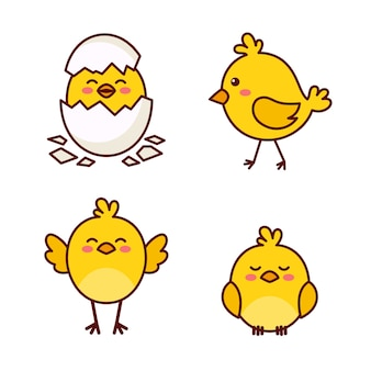 Simpatico cartone animato di pollo