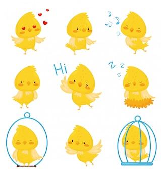 I caratteri svegli del pollo in varie situazioni hanno messo, illustrazione divertente emozionale del personaggio dei cartoni animati dell'uccello su un fondo bianco