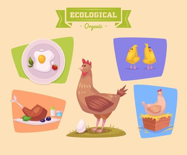 Animale da fattoria carino pollo. illustrazione di animali da fattoria isolati impostato su sfondo colorato. illustrazione piatta