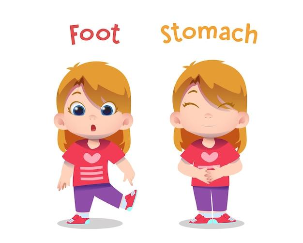 Caratteri di bambini svegli che indicano piede e stomaco