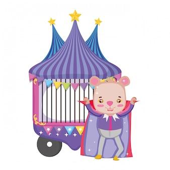 Simpatico orso da circo con strato e chiosco