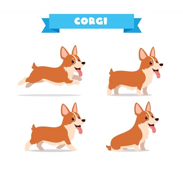 Simpatico animale domestico cane corgi con molti set di fasci di pose