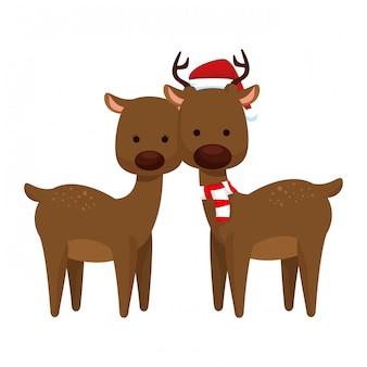 Simpatici personaggi natalizi renna coppia