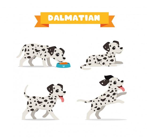 Simpatico animale domestico cane dalmata con molti set di bundle di posa