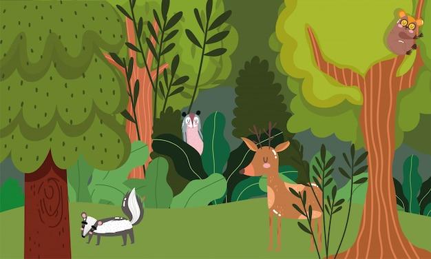 Simpatici cervi sull'albero, cervi e scoiattoli