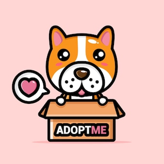 Simpatico cane nella casella di adozione