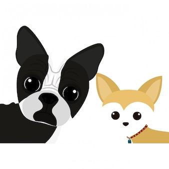 Icona di cartone animato cane carino