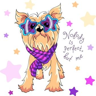 Simpatico cane color crema pallida di razza yorkshire terrier con occhiali arcobaleno stella alla moda e sciarpa a righe