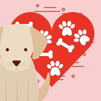 Simpatico cane seduto con zampa e ossa cuore amore cane domestico