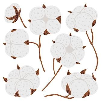 Set di illustrazioni vettoriali per palline lanuginose di piante di fiori di cotone di scarabocchio carino