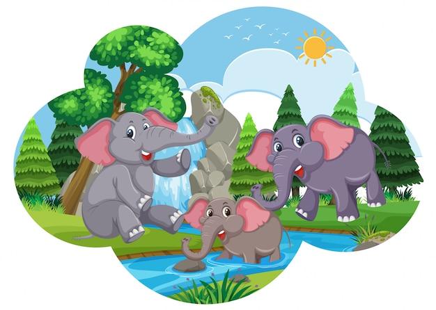 Elefanti svegli che giocano in acqua