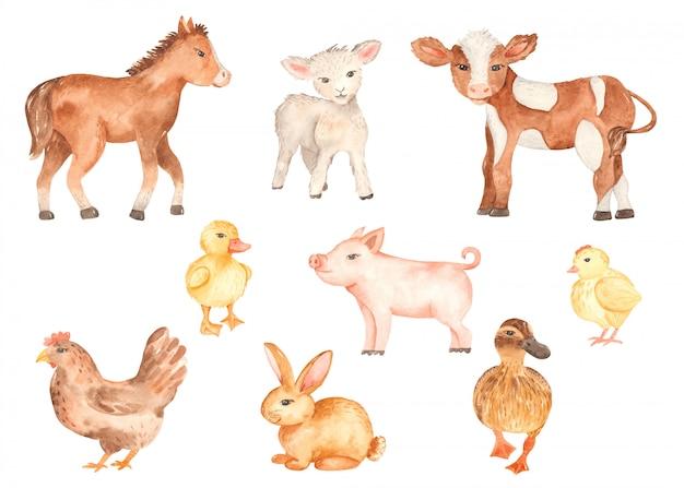 Acquerello di simpatici animali da fattoria