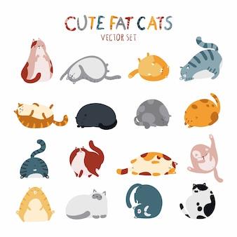 Simpatici gatti grassi di razze diverse in varie pose.