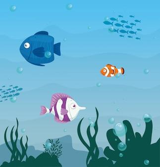 Animali marini selvaggi dei pesci svegli in oceano, abitanti del mondo del mare, creature subacquee sveglie, concetto marino dell'habitat