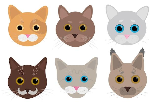 Illustrazione di raccolta gatti piatti carino
