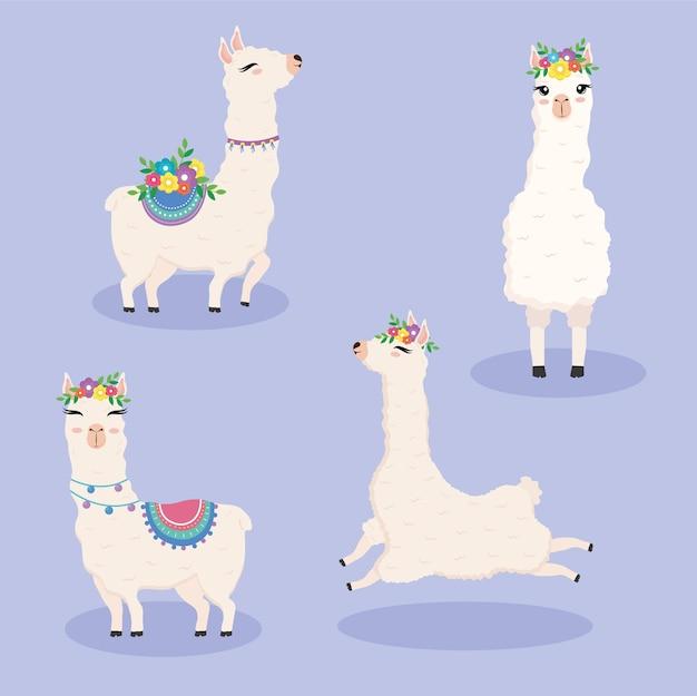 Caratteri di animali esotici di alpaca di farina carina con disegno di illustrazione di fiori