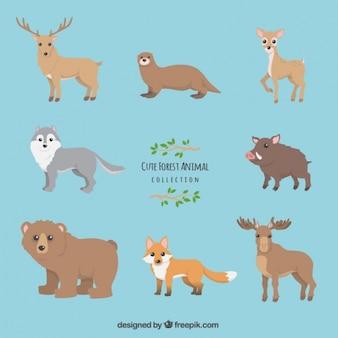 Raccolta simpatico animale foresta