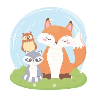 Simpatici animali del fumetto volpe procione e gufo nell'illustrazione di erba