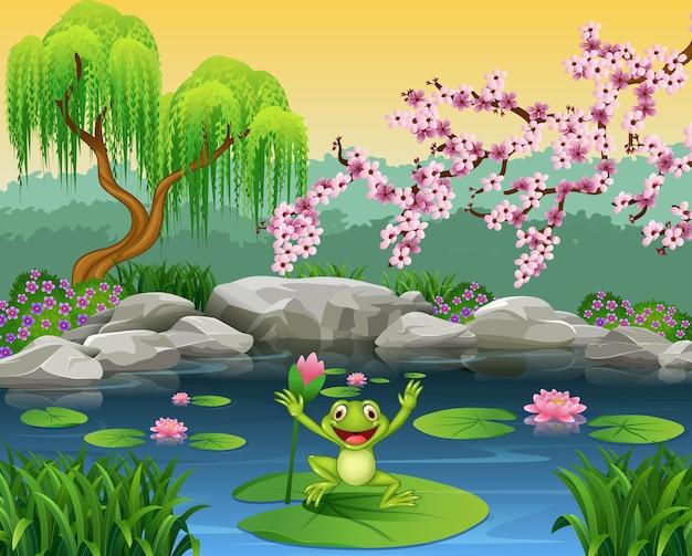 Cute rana che salta sull'acqua giglio