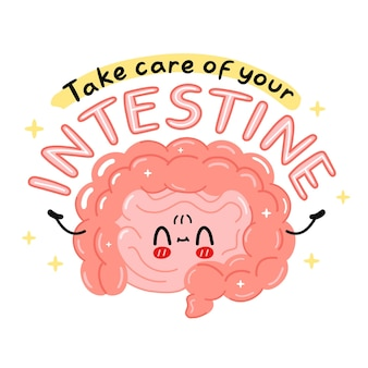 Simpatico personaggio divertente dell'organo intestinale. prenditi cura del tuo slogan di citazione intestinale. icona di vettore del fumetto kawaii carattere illustrazione. isolato su sfondo bianco. organo umano, concetto di personaggio dei cartoni animati
