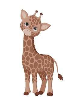 Giraffa carina isolata su uno sfondo bianco. animali della giungla. illustrazione di vettore eps10.