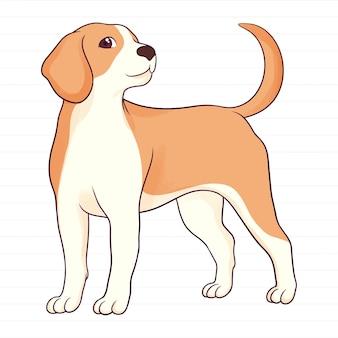 Cane beagle disegnato a mano sveglio