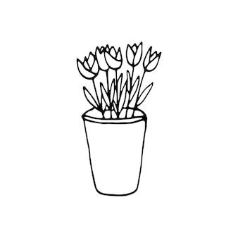 Simpatico elemento disegnato a mano del vaso di fiori. doodle piante da appartamento illustrazione vettoriale per la progettazione di nozze, logo e biglietto di auguri. isolato su sfondo bianco.