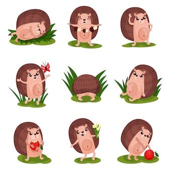 Insieme sveglio dell'istrice, personaggi dei cartoni animati animali divertenti nelle situazioni differenti illustrazione su un fondo bianco
