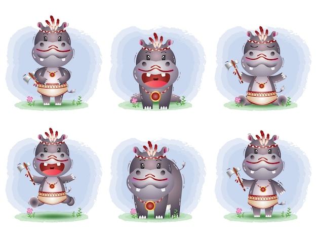 Simpatica collezione di ippopotami con costume apache