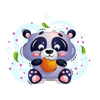 Simpatico orso panda affamato si siede e mangia i biscotti.