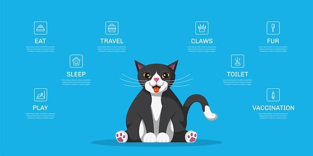 Illustrazione sveglia dei bisogni del gatto. modello di infografica per negozio di animali