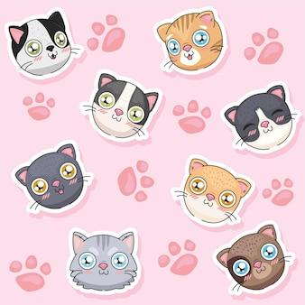 Gattino carino con impronte