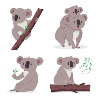 Orso di koala sveglio con un bambino su un albero di eucalyptus. set piatto di cartone animato di personaggi animali isolato su sfondo bianco.