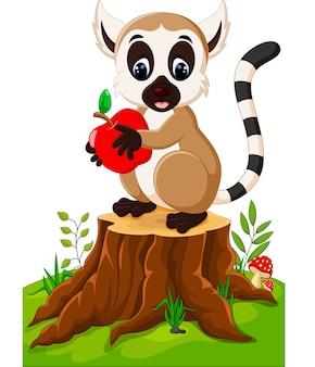 Lemure sveglie che stanno sul ceppo di albero