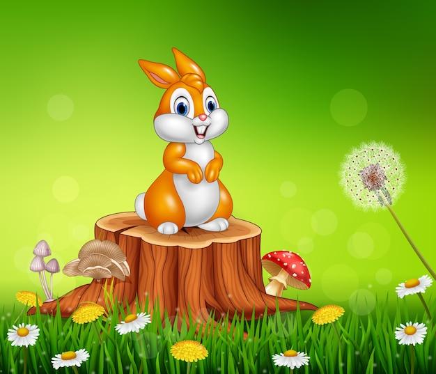 Piccolo coniglietto sveglio che si siede sul fondo dell'erba del ceppo di albero