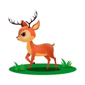 Piccolo cervo sveglio nell'erba