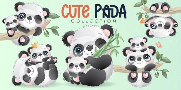 Piccolo panda sveglio con l'insieme dell'illustrazione dell'acquerello