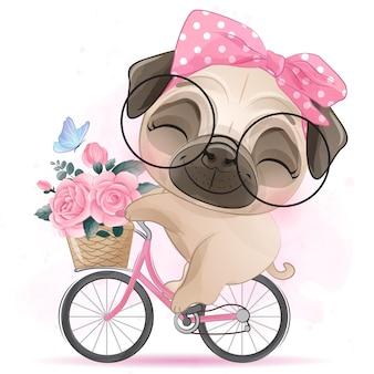 Piccolo pug sveglio che guida una bicicletta