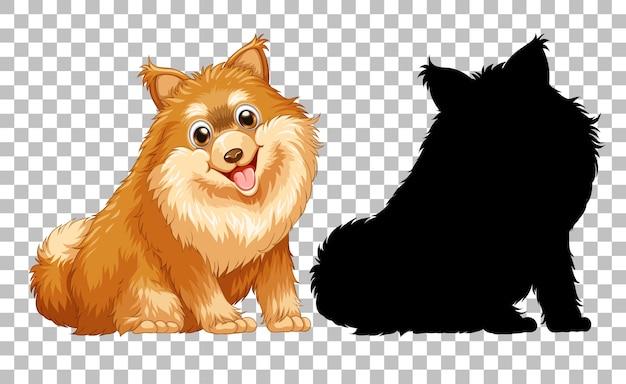 Simpatico cane pomeranian e la sua silhouette su trasparente