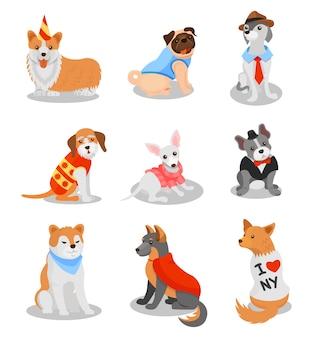 I cuccioli di razza svegli hanno messo, illustrazioni di caratteri di razza del cane su un fondo bianco