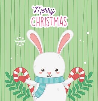 Simpatico coniglio con bastoncini di zucchero e foglie buon natale