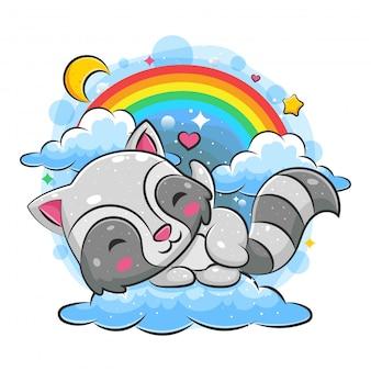 Procione sveglio che dorme sulla nuvola