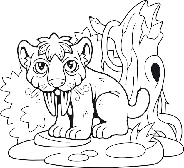 Simpatica tigre dai denti a sciabola