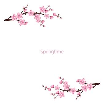 Simpatica cornice di fiori di sakura i rami di ciliegio sono sbocciati decorazione festiva per le vacanze di nozze