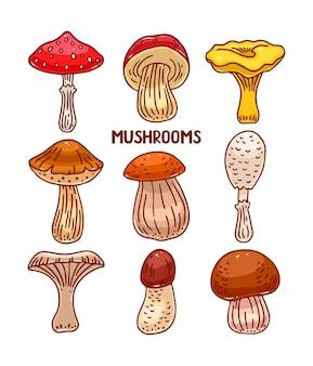 Insieme sveglio di vari tipi di funghi colorati di schizzo. illustrazione disegnata a mano
