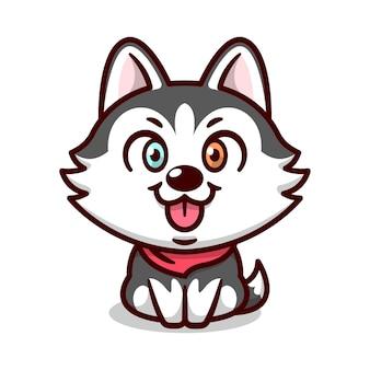 Simpatico husky siberiano con occhi di colore diverso è seduto e sorridente mascotte dei cartoni animati.