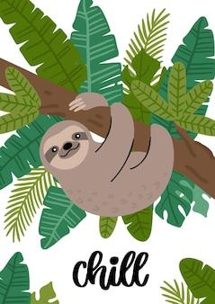 Simpatico bradipo e frase chill