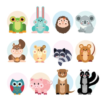 Cute small animal pack