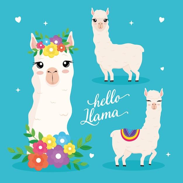 Simpatici tre alpaca animali esotici e disegno di illustrazione scritta